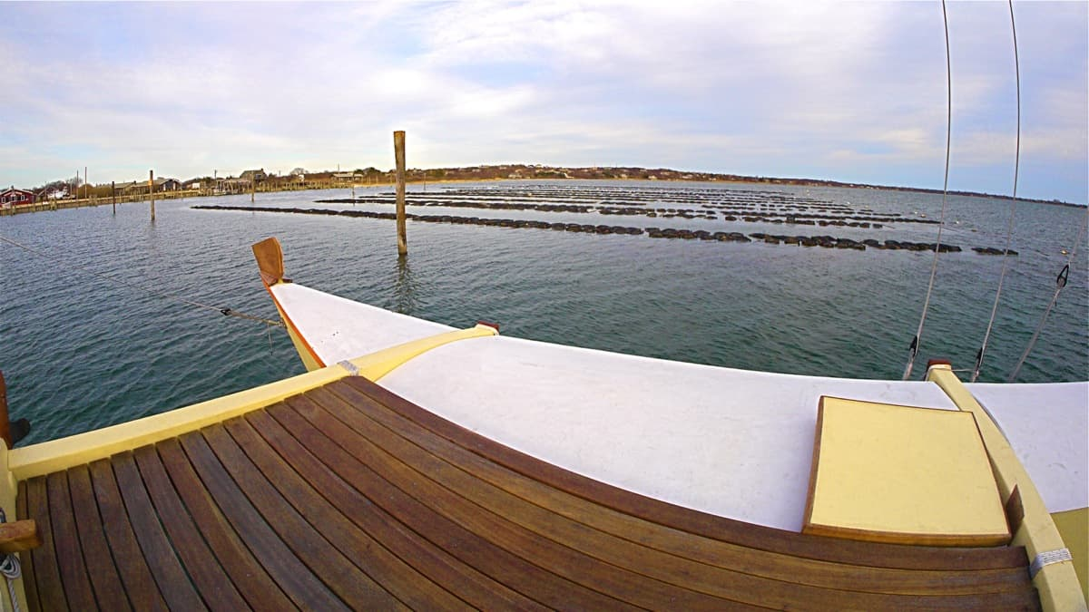 The oyster beds at the Montauk Shellfish Company, seen from the deck of the charter sailing catamaran MON TIKI, March 2013, Montauk NY, photo by Sailing Montauk