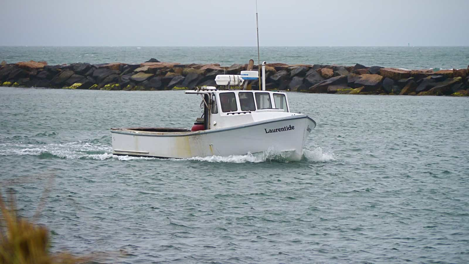 Fish don t care if it s rainy and cold catamaran mon for Montauk ny fishing