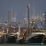 F/V Perception, F/V Rianda S, S/V Tenacity, and S/V Caitlin & Mairead lay on town dock. Montauk Harbor, NY, photo by Sailing Montauk