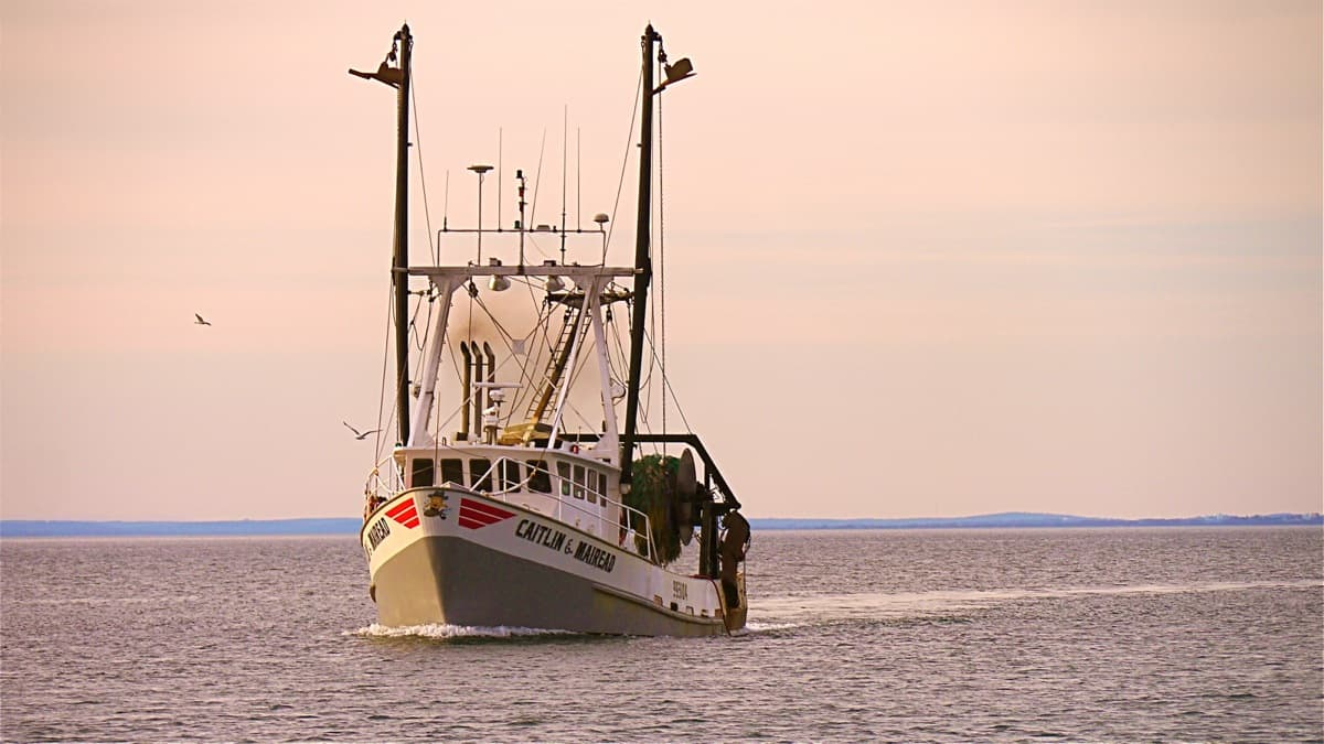 The fishing vessel caitlin mairead underway catamaran for Montauk fishing charters