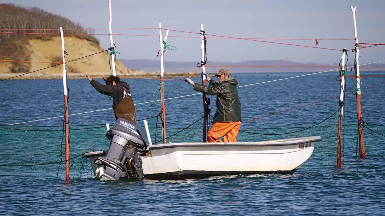 Catamaran Mon Tiki: Sailing Charters , Sunset Cruises and Private Corporate Events in Montauk, the Hamptons